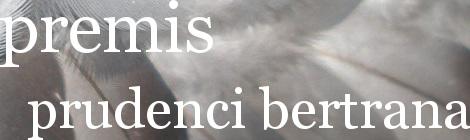 Premis Prudenci Bertrana