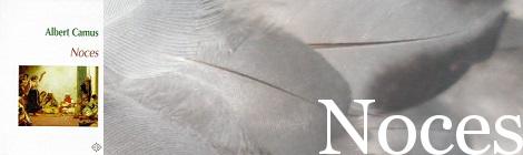 Noces (francès). Portada