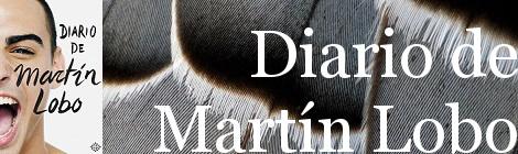 Diario de Martín Lobo. Portada
