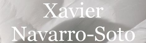 Xavier Navarro-Soto. Portada