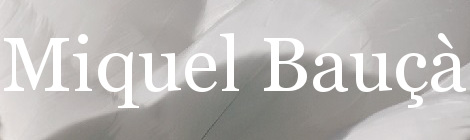 Miquel Bauçà. Portada